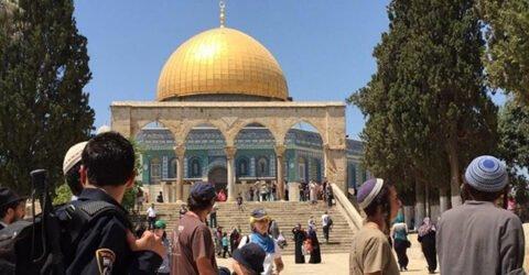 আল-আকসা জোর করে ঢুকে পড়লো শত শত ইহুদি