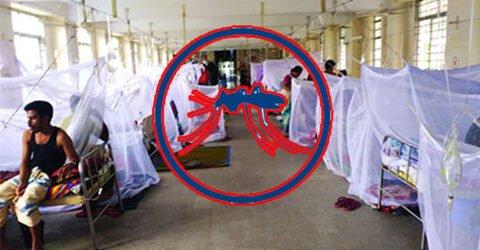 ডেঙ্গু আক্রান্ত আরও ২৭৫ রোগী হাসপাতালে